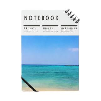 NOTE_DE01_02 Notes