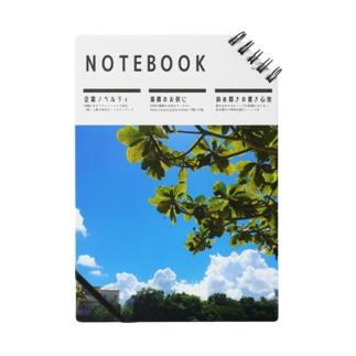 NOTE_DE01_05 Notes