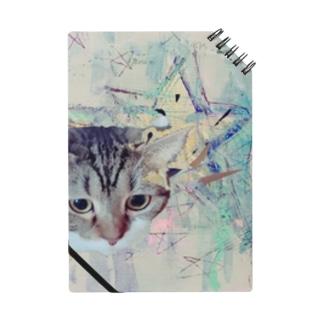 星の猫さん Notes