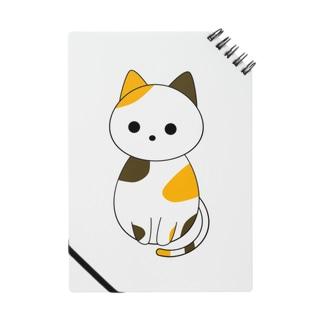 斜め下を見る三毛猫 Notes