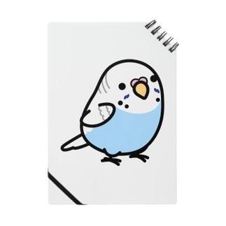 Chubby Bird セキセイインコ Notes