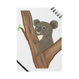 コアラ 抱っこあら Notes