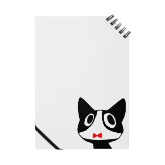 パンツネコ Notes
