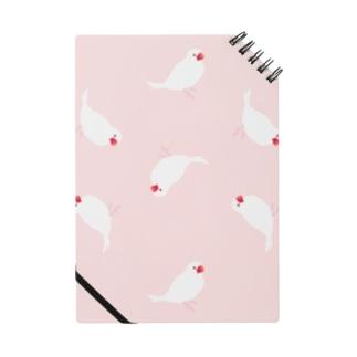 白文鳥 ピンク Notes