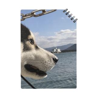 海を見るハスキー Notes