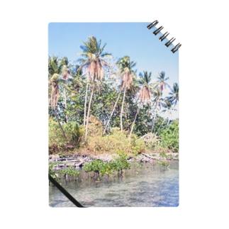 ミクロネシア:ナンマトル遺跡の風景写真 Micronesia: Nan Madol / Pohnpei Notes