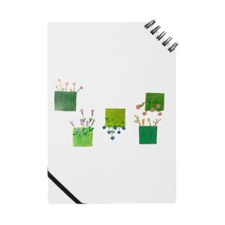 こころの庭 Notes