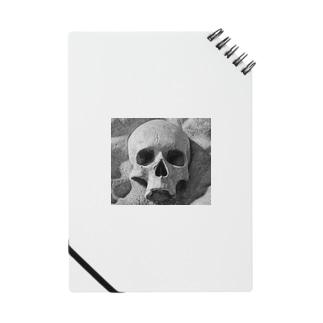 the  skull Notes