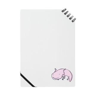 ぴーちゃん Notes
