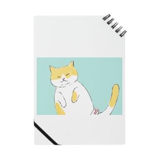 癒しへそ天猫さん Notebook