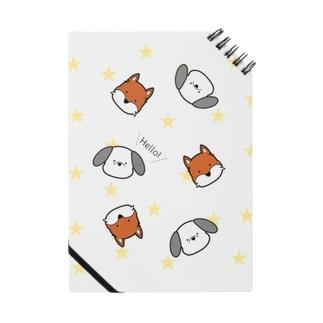 ぽて𖧷てん Notes