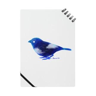 天空雀 Notes