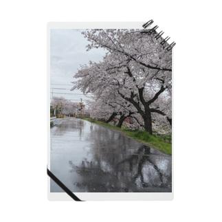 桜と踏切のウユニ塩湖風 Notes
