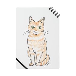 purufriends.ginger Notes