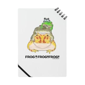 カエルのピラミッド Notes