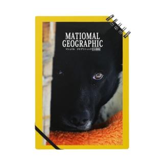 犬をのぞく時、犬もまたこちらをのぞいているのだ Notes
