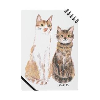0208marumokonacats ノート