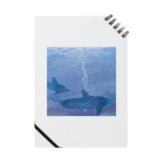 イルカの夢 Notes