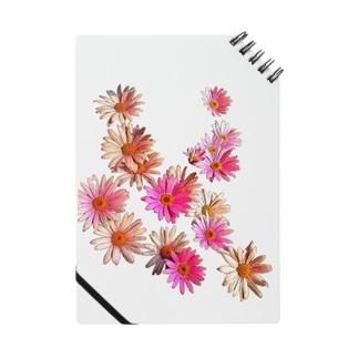 花はな Notes