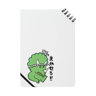 タヨレル・トリケラ Notes