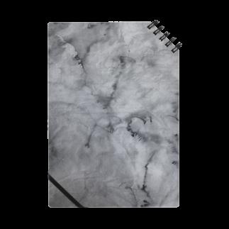 加藤美奈の細胞 Notes