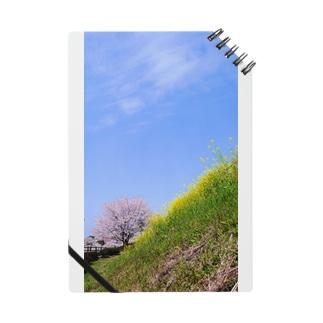 桜5 Notes