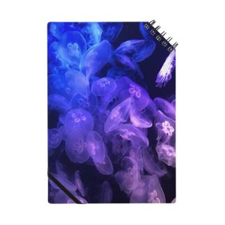 綺麗なクラゲ Notebook
