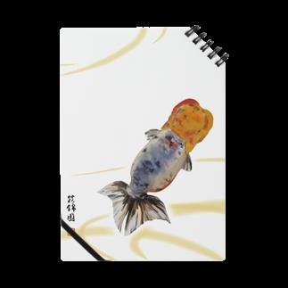 花錦園 ~Kakin-en~の【金魚】江戸錦~藍のゆらめき~ Notes