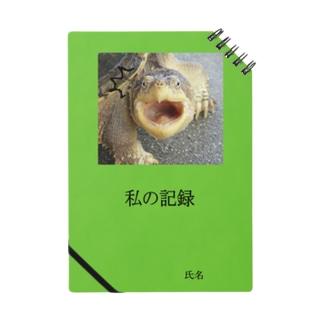カミツキガメ2 Notes