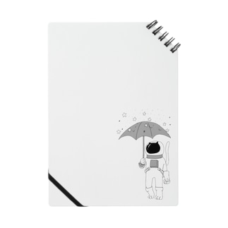 流星雨 Notes