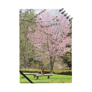 春のりすちゃん Notes