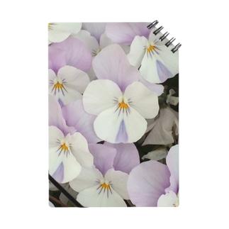 淡紫白パンジー ノート