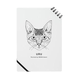 1CAT(URU)お顔のみ Notes