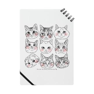 猫猫猫2 Notes