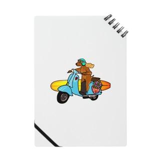 Coda surfdog Notes