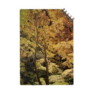 木々 ノート
