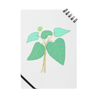 Kalo Notes