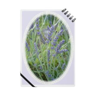 Lavender decorative - 19世紀風 -  Notes