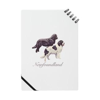 ニューファン Newfoundland Notes