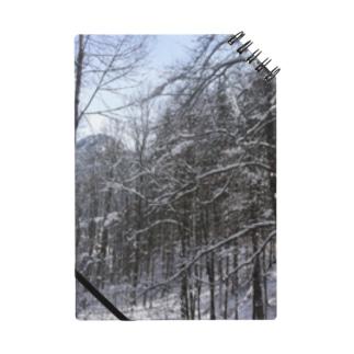 世界の風景:Fuessen Notes