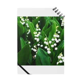 Lily of the Valley Notes