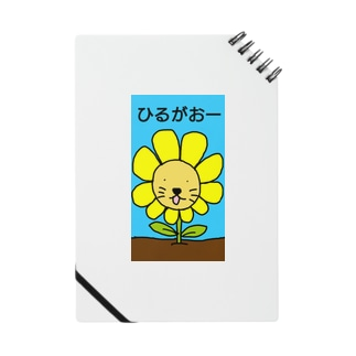 ひるがおー Notes