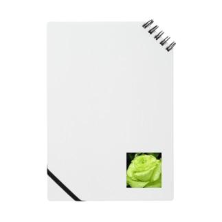 若翠 Notebook