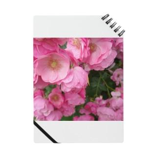 群集う桃薔薇。 Notebook
