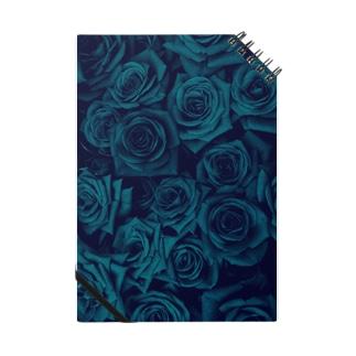 バラ 薔薇  Notes
