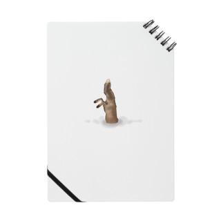 キツネの狩り Notes