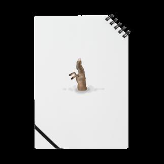 ANInomaMALのキツネの狩り Notes