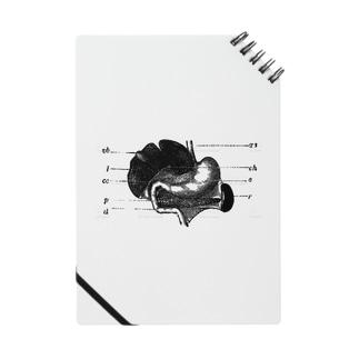 思考回路の末 Notes