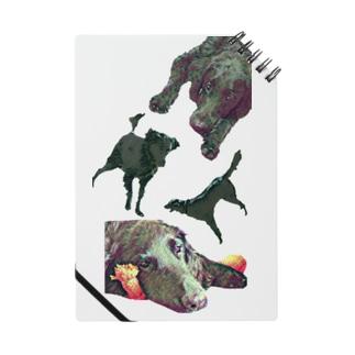 黒犬騎士団 Notes