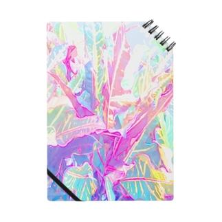 南国の葉っぱ🌿 ノート